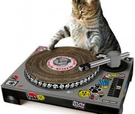 Grattoir pour chat platine DJ